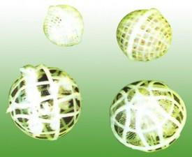 多孔球型悬浮填料